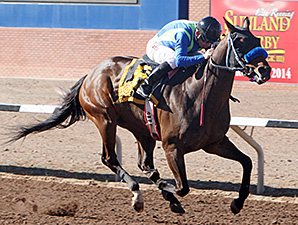 Isn't He Clever wins race 10.