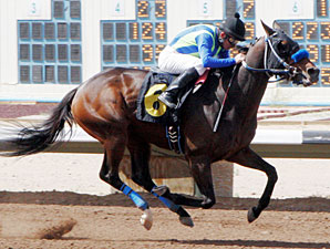 Isn't He Clever wins the San Juan County Commissioners Handicap.