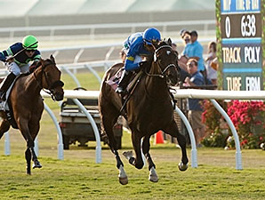 Istanford Wires Del Mar's Sandy Blue 'Cap