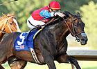 It&#39;s a Bird Positive After Oaklawn Handicap