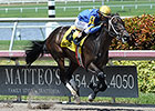 It's High Time, Dream of Me Win at Gulfstream