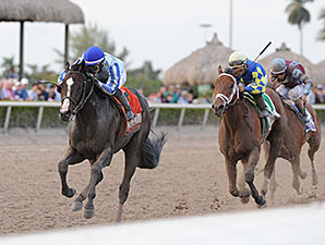 Handle-Wise, Gulfstream Has One of Best Days