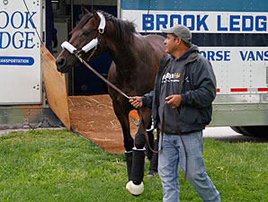 Itsmyluckyday arrives at Churchill Downs for the Kentucky Derby.