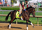 Itsmyluckyday Likely Starter in Preakness
