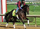 Itsmyluckyday&#39;s Preakness Work Postponed