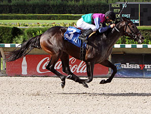 Itsmyluckyday wins the 2012 Foolish Pleasure.