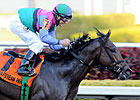 Itsmyluckyday Gets Back to Work