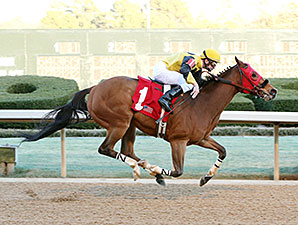 Ivan Fallunovalot wins the 2015 King Cotton Stakes.
