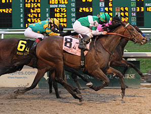 Ive Struck a Nerve wins the 2013 Risen Star.