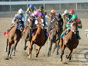 Izzie's Gold wins the 2011 Louisiana Champions Day Lassie.