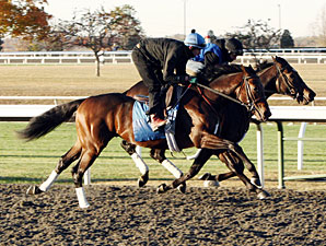 J. B.'s Thunder works at Keeneland, 10/22/10.