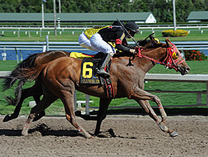 J B's Unc wins the 2014 Iron Horse Stakes.