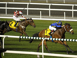 J J The Jet Plane wins the Dubai Duty Free Finest Surprise.