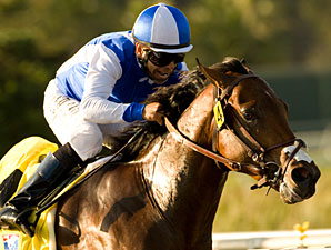 J P's Gusto Romps in Del Mar Futurity