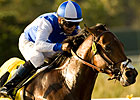 J P&#39;s Gusto Spices Up Southwest Stakes