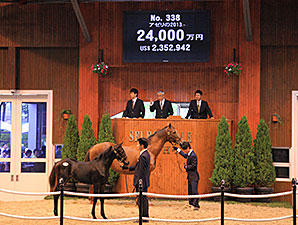 Azeri Foal by Deep Impact Tops JRHA Sale