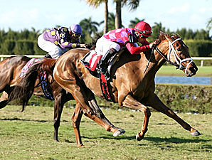 J'ray takes the 2007 My Charmer in December.