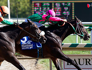 Jack On the Rocks wins the 2010 Maryland Million Sprint.