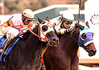 Jack's in the Deck in Maryland Sprint Upset