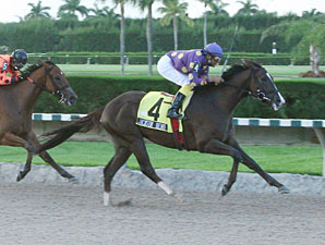 Jackson Bend wins the 2009 Affirmed Division of the Florida Stallion Stakes.