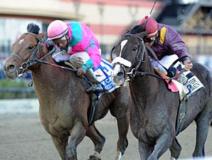 Jackson Bend wins the 2012 Carter.