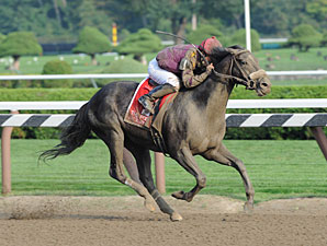 Jackson Bend wins the 2011 Forego.