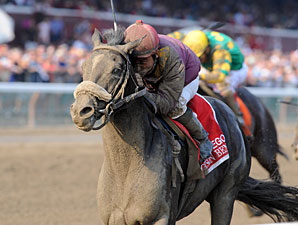 Jackson Bend Works Quick Half  in Saratoga