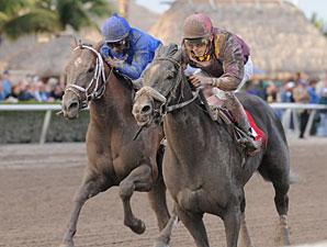 Jackson Bend wins the 2012 Hal's Hope.
