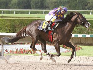 Jackson Bend Sweeps Florida Stallion Stakes