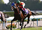 Aussie Rider Guides Jaguar Mail to Japan Win