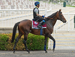 Inaugural American St. Leger Attracts Dozen