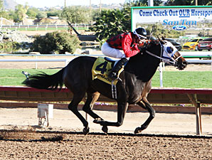 Jamaican Memories wins the 2012 Cactus Wren Stakes.