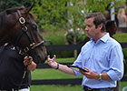 MarketWatch: Jamie Hill on Sires, Pinhooking