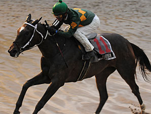 Wet Weather for Saratoga Opener