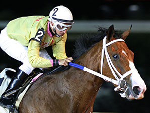 Jax and Jill wins the 2013 Its Binn Too Long Stakes.
