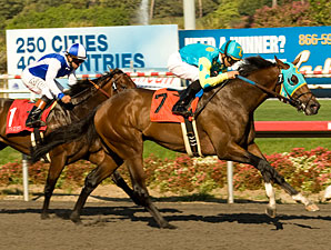 Jaycito wins the 2010 Norfolk