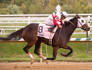 Jazzy Idea wins the 2012 Maryland Million Oaks.