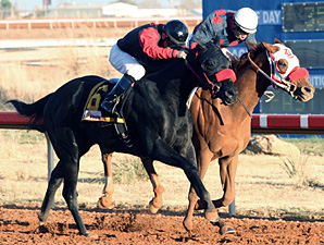 Jenson's Miracle wins the New Mexico Eddy County Stakes.