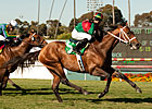 Jeranimo Looks to Stay Sharp in Del Mar Mile