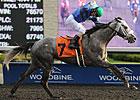 Jockey Campbell Posts Five Wins at Woodbine
