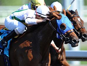 Jesters Jazz wins the 2010 Lady Angela.
