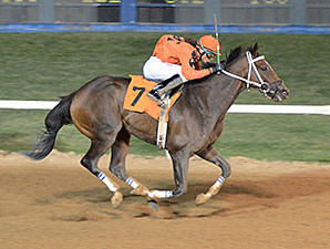 Johnny Whip wins the 2014 Route 66 Stakes.