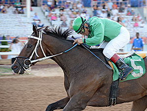 Johnny Whip wins the 2015 Route 66 Stakes.