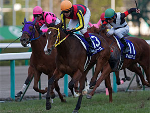 Joie de Vivre wins the 2011 Hanshin Juvenile Fillies.