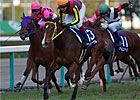 Buena Vista&#39;s Half Sister Takes Hanshin Title