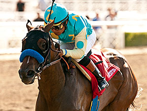Jojo Warrior wins the 2014 Summertime Oaks.