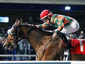Jose Sea View wins the 2013 Fitz Dixon Jr. Memorial Juvenile Stakes.