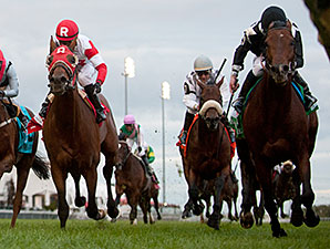 Joshua Tree wins the Canadian International Stakes.