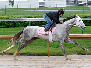Joyful Victory Stands Out in Mother Goose