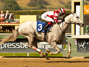 Joyful Victory wins the 2013 Santa Margarita.
